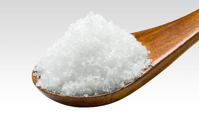 これからの減塩食を考える~「おいしく食べる」ご提案~
